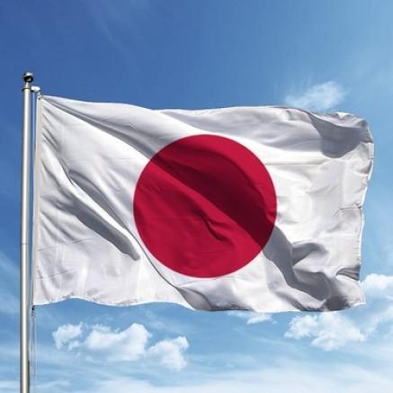 JAPONYA'NIN YAPTIĞI KORUKTMA MI GERÇEK Mİ